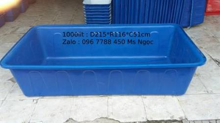 Thùng nhựa 1000 lít nuôi cá cảnh Lhe 0967788450 Ngọc