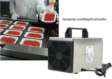 Máy tạo Ozone 10G Ceramic khử mùi, khử vi khuẩn, khử vi rút
