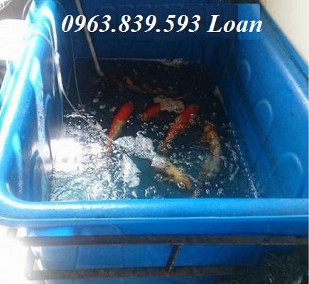Thùng nhựa nuôi cá, thùng nhựa đặc chữ nhật 750L rẻ.