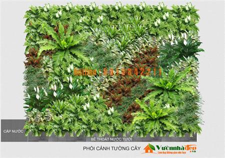 Khuyến mãi thi công tường cây giảm 600.000 đ/m2. - 091334221