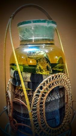 Rượu rắn Vĩnh Sơn món quà biếu ý nghĩa