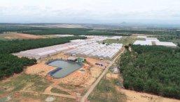 Bán đất Bình Thuận giá siêu lời đã có sổ bao sang tên công