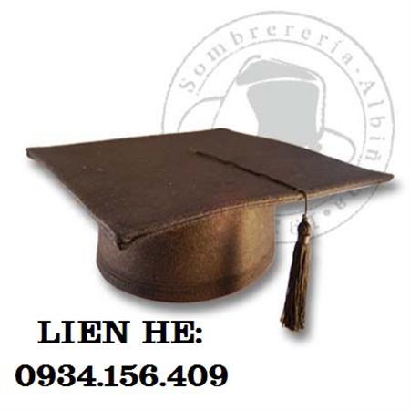 may nón noel, nón tốt nghiệp, áo tốt nghiệp giá rẻ