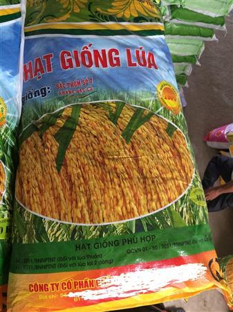 bao đựng lúa giống giá rẻ, bao PP dệt đựng lúa giống.