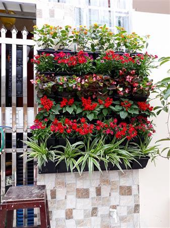 Khung chậu nhựa vườn tường- vườn đứng trồng rau, hoa (1m2)