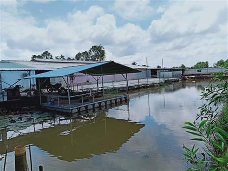 Bán xưởng 3290m2, có nhà xưởng 1000m2, ao nuôi cá. Thích