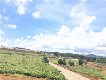 Chính chủ bán lô đất thổ cư 100% giá 750triệu ngay đồi chè