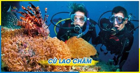 Lịch trình Tour Lặn bình khí Cù Lao Chàm Thú vị